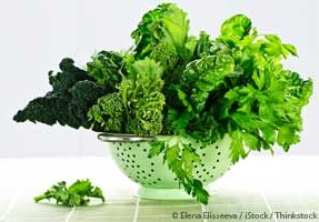 Dark leafy vegetables are high in magnesium