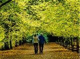 peaceful walk avoiding constipation